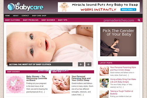 baby care plr blog