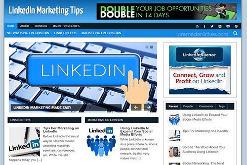linkedin marketing plr blog