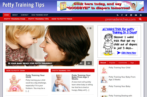 potty training plr blog