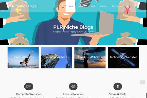 plr niche blog reseller store