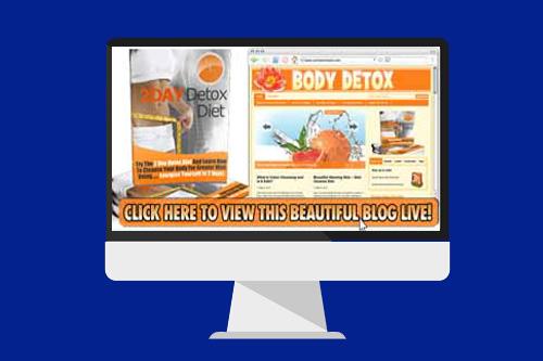 body detox blog